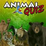 Animal Quiz
