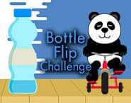 Bottle Flip Challenge Dab