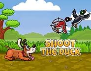 Shoot the Duck